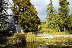 Beautiful autumn park with a pond with lilies. In the Botanical Garden of the University of Latvia, Riga, Latvia.The garden was founded in 1922 Stock Images
