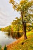 Beautiful autumn park on Yelagin Island Stock Photo