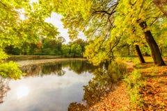 Beautiful autumn park on Yelagin Island Royalty Free Stock Image
