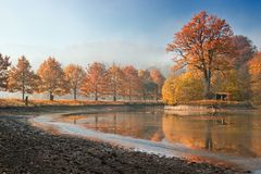 Beautiful autumn on pond Royalty Free Stock Photo