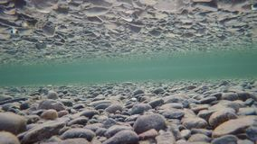 Beautiful autumn river bottom with ice flakes floating past and reflection on surface tension, underwater stock footage