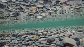 Beautiful autumn river bottom with ice flakes floating past and reflection on surface tension, underwater. 4k resolution video stock video footage