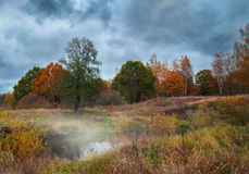 Beautiful autumn river landscape with colorful trees and fog. On cloudy day Stock Photos