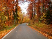 Beautiful Autumn Road. A beautiful road in Germany during the fall stock images