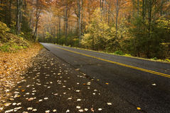 Beautiful Autumn Road Royalty Free Stock Photography