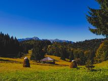 Beautiful autumn in Romania royalty free stock photos