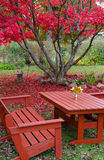 Beautiful autumn's garden details Stock Photo