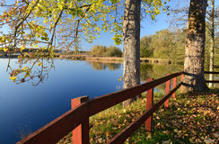 Beautiful autumn's view Royalty Free Stock Photo