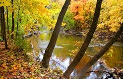 Beautiful Autumn Scene Stock Image