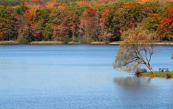 Beautiful Autumn Scene Royalty Free Stock Photography