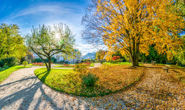 Beautiful autumn scene in park at sunrise, Salzburg, Austria Stock Photo