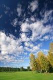 Beautiful autumn scenery. With deep blue sky Stock Photos