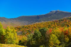 Autumn on Mount Mansfield Vermont Stock Images