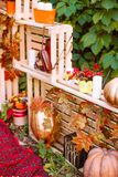 Beautiful autumn. Autumn scenery in nature. Apples and orange pumpkins Royalty Free Stock Photos
