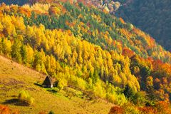 Beautiful autumn scenery with traditional straw roof house in Ap. Useni mountains, Transylvania Royalty Free Stock Photos