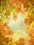 Beautiful autumn in Scotland Royalty Free Stock Images