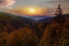 Beautiful autumn season leaves color change in hokkaido japan stock photos