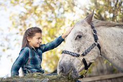 In a beautiful Autumn season of a young girl and horse royalty free stock photography