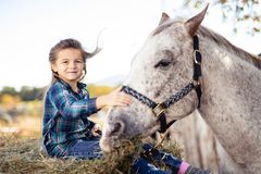 In a beautiful Autumn season of a young girl and horse royalty free stock photo