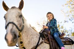 In a beautiful Autumn season of a young girl and horse stock photo