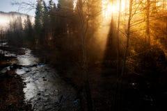 Beautiful autumn sunny photo taken in Beskid mountains Royalty Free Stock Photography