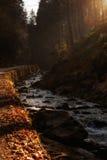 Beautiful autumn sunny photo taken in Beskid mountains Stock Image