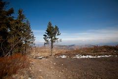 Beautiful autumn sunny photo taken in Beskid mountains Royalty Free Stock Image