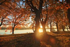 Beautiful autumn sunset over lake in Russia. Beautiful autumn sunset over the lake in Russia Royalty Free Stock Image