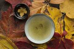 Autumn tea time still life top view closup. Beautiful autumn tea time ceremony still life top view closup background Royalty Free Stock Photos