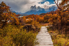 Beautiful autumn in Torres del Paine, Chile Stock Photo