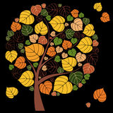 Beautiful Autumn Tree Stock Photos