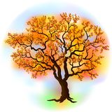 Beautiful autumn tree. On a colored background Royalty Free Stock Photography