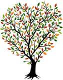 Beautiful autumn tree with motley crown vector illustration