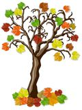 Beautiful autumn tree with multicolored leaves. On white background Stock Photography