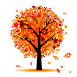 Beautiful autumn tree for your design Royalty Free Stock Photo
