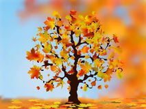 Beautiful autumn tree for your design. Stock Images