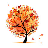 Beautiful autumn tree for your design Stock Photos
