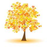Beautiful autumn tree Stock Photos