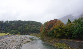 Beautiful autumn trees along the river of Shirakawa village Royalty Free Stock Photography