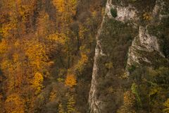 Beautiful autumn, trees are full of colours. Karst relief in autumn season, the colors were very vibrant and the trees started to loose leaves Royalty Free Stock Photos