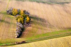 Beautiful autumn trees growing between the Golden hills of southern Moravia. Czech Republic. Royalty Free Stock Photography