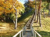 Autumn trees, hill and wooden stair, Lithuania royalty free stock image