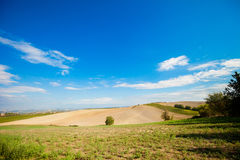 Beautiful autumn Tuscany vineyards view Royalty Free Stock Images