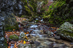 Beautiful autumn valley with waterfalls and green rocks Stock Photo