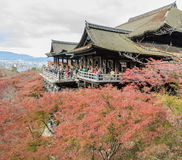 Beautiful autumn view of ancient wooden architecture at Kiyomizu Stock Images