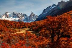 Beautiful autumn view of Cerro Torre mountain. Patagonia, Argentina stock images