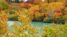 Beautiful autumn view at Jigokunuma Pond