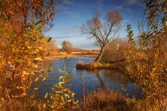 Beautiful autumn view of the lake stock photo