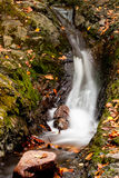 Beautiful autumn waterfall. With some leafs Stock Image