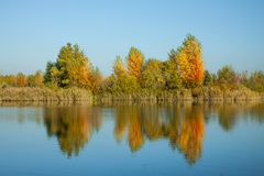 Beautiful autumn waterfront landscape trees reflecting on the smooth water surface. Warm autumn day on the lake royalty free stock photos